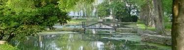 The pond at the Illinois Vipassana Center
