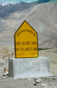 Don't Become Gama In The Land Of The Lama